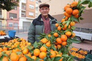 mercado naranja